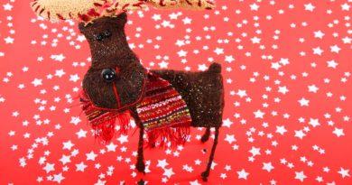 Rudolf med den røde tud