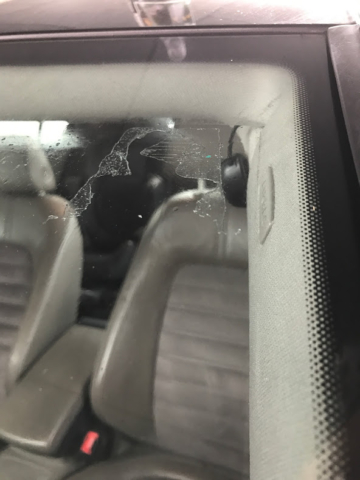 Lampeolie til at fjerne klistermærker på bilruden