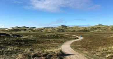 Hvordan er stranden og sommerhus området ved Bjerregaard syd for Hvide Sande?