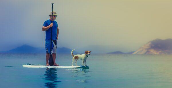 stand up paddle board paddling regler sikkerhed kom i gang med hvordan hvor kan man