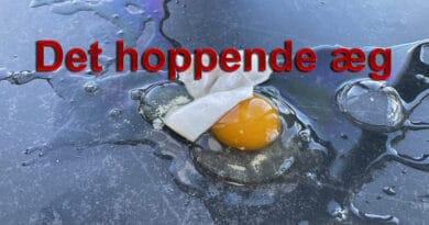 det hoppende æg ægsperiment eksperiment skolebørn børn hjemmeskole forsøg